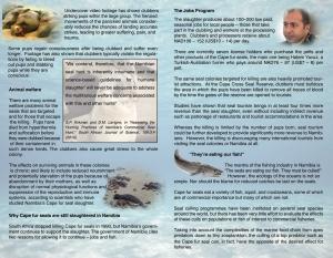 SPN Cape fur seals leaflet inside pages